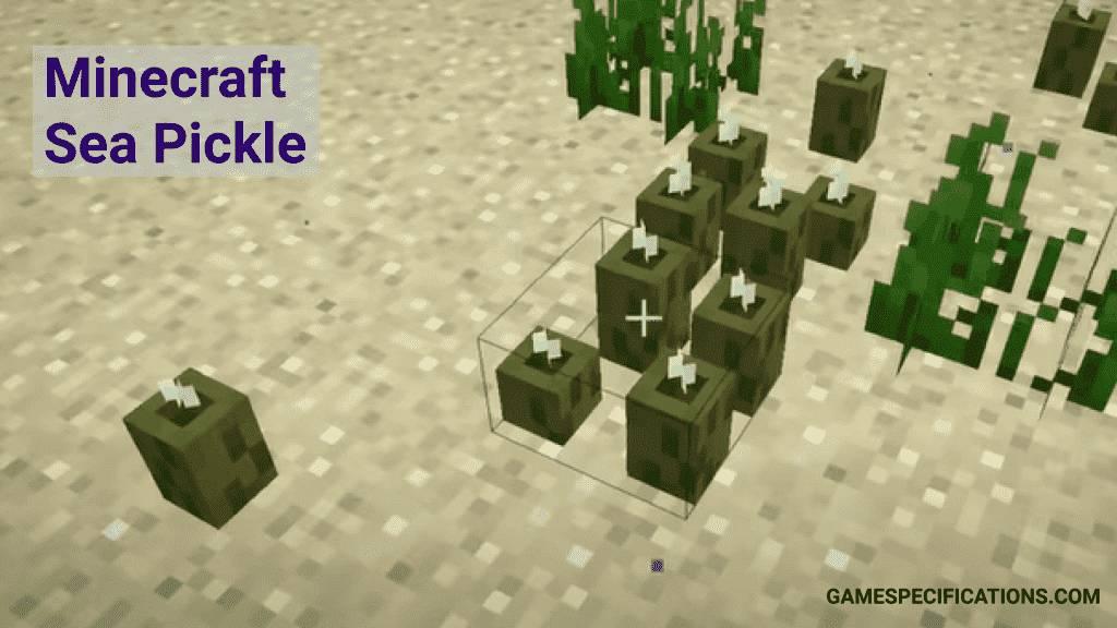 Minecraft sea pickle
