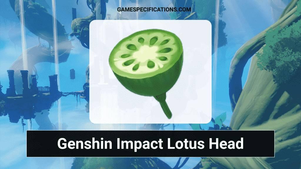 Genshin Impact Lotus Head