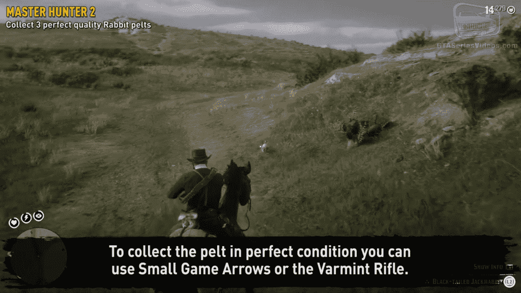 Rabbit Pelts Hunter Mission