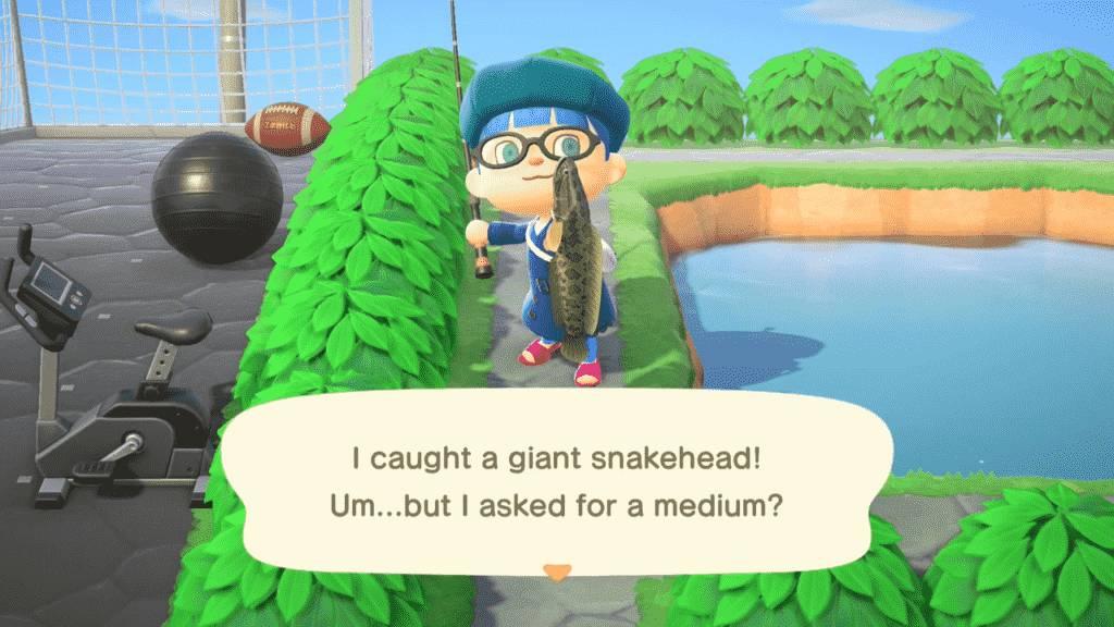 Animal Crossing Giant Snakehead Fishing