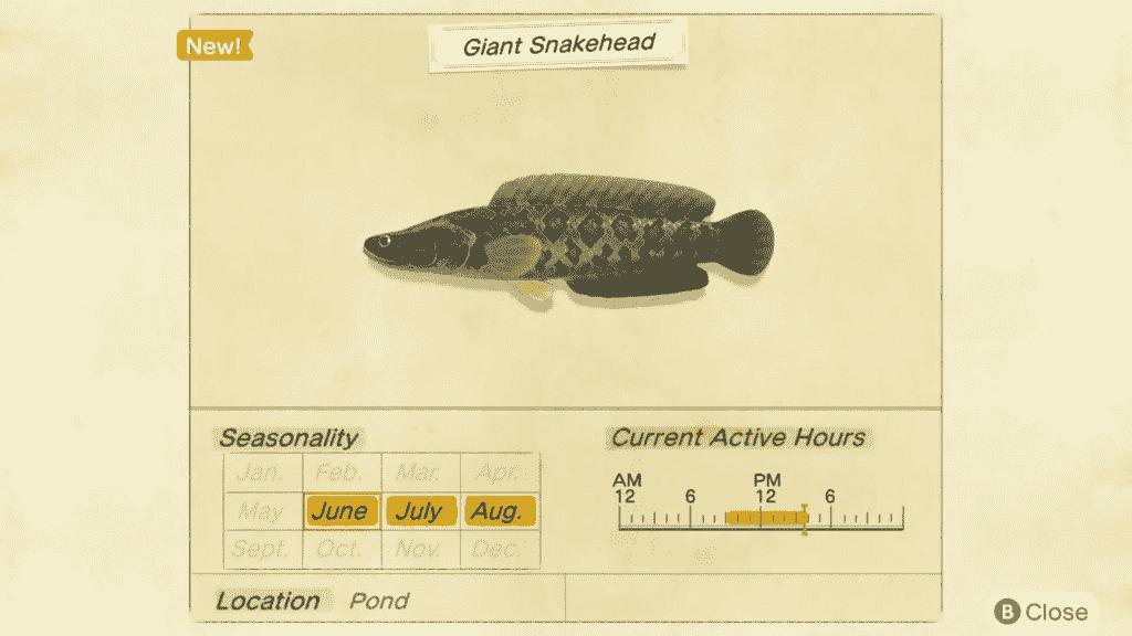 Animal Crossing Giant Snakehead