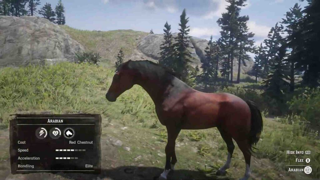 Red Dead Redemption 2 Horses Arabian