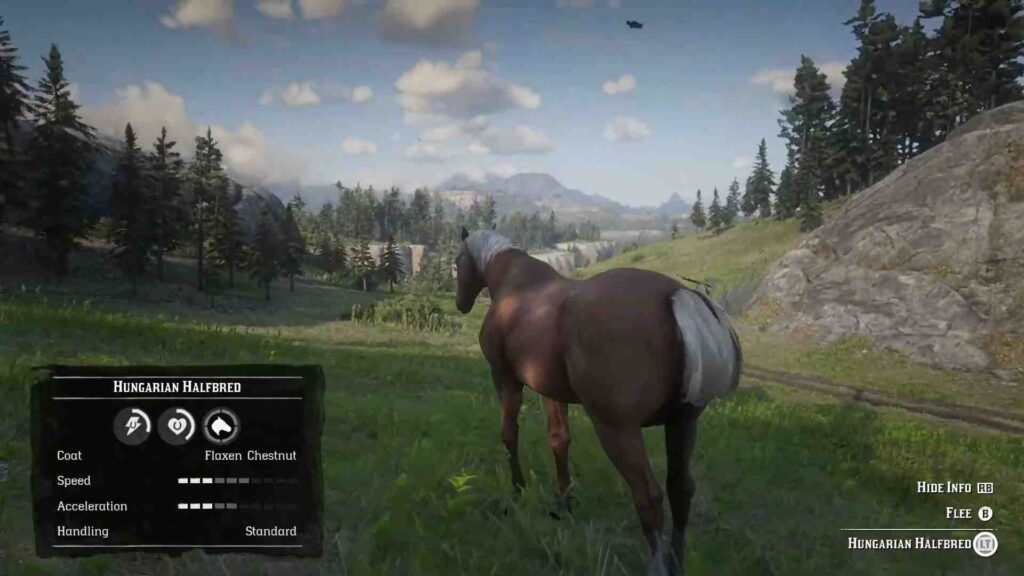 Red Dead Redemption 2 Horses Hungarian Halfbred