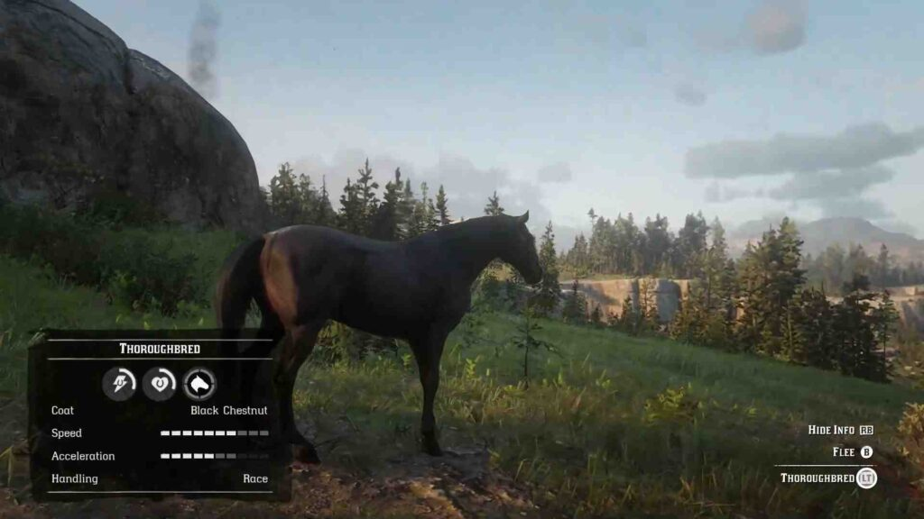 Red Dead Redemption 2 Horses Thoroughbred