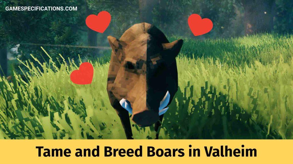 Boars in Valheim