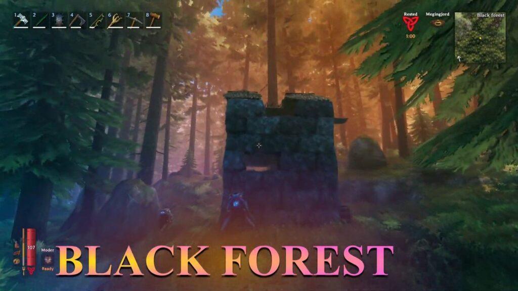 valheim biome Black forest