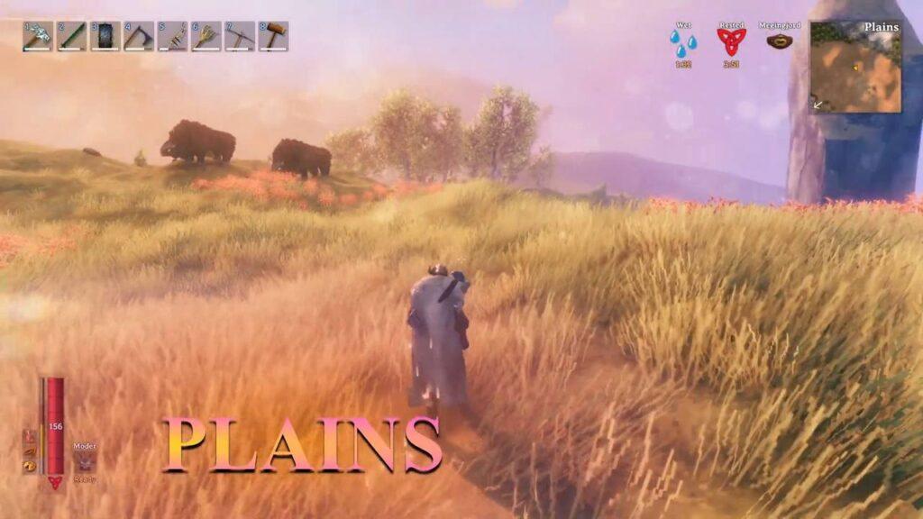 valheim biome Plains