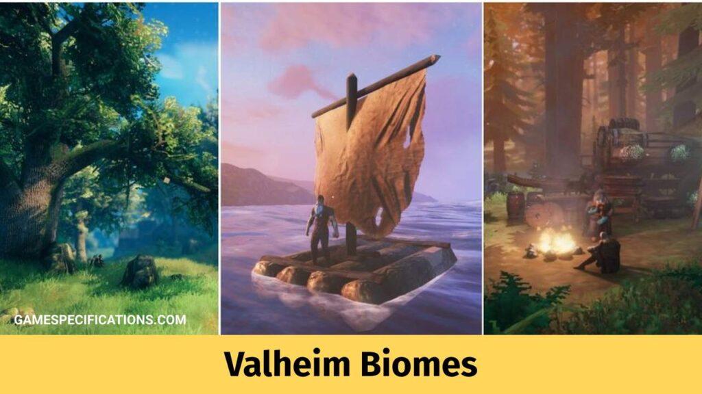 valheim biomes