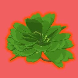 57 Leaf Clover
